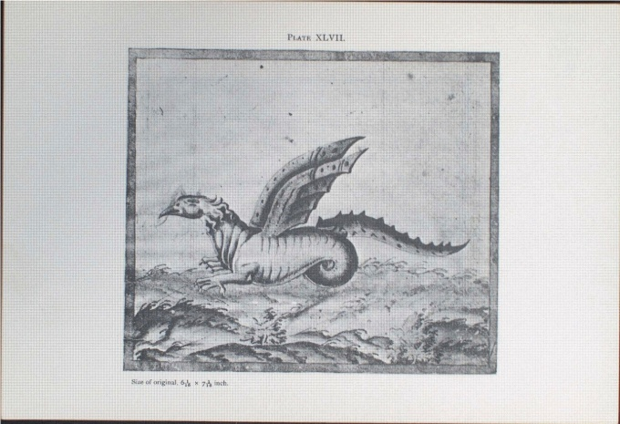 A Dragon, Attributed to Samuel de Champlain